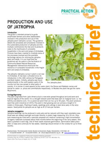 Production and Use of Jatropha