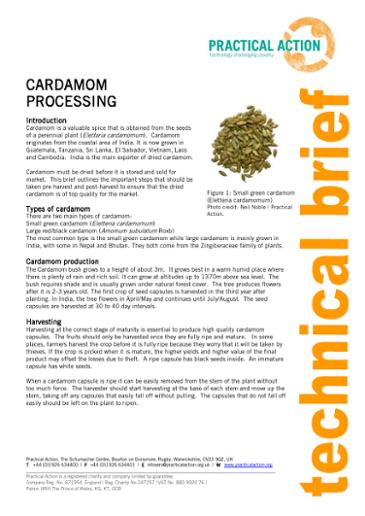 Cardamom Processing