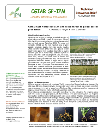 Cereal Cyst Nematodes: An unnoticed threat to global cereal production
