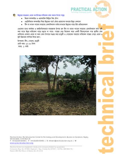 Preventing Coconuts AgainstRat Attack