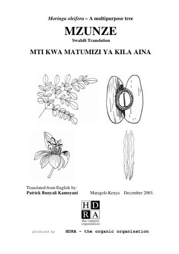 Mzunze