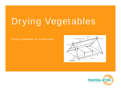 Drying Vegetables