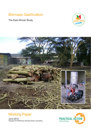 Biomass Gasification: The East African Study