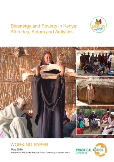 Bioenergy and Poverty in Kenya: Attitudes, Actors and Activities