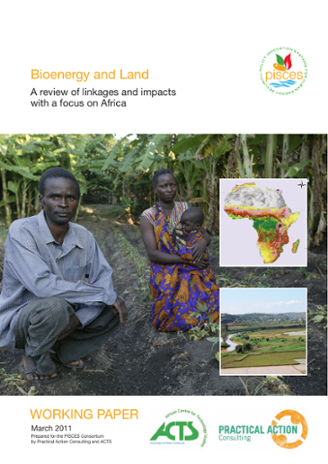 Bioenergy and Land: A review of linkages and impacts with a focus on Africa,