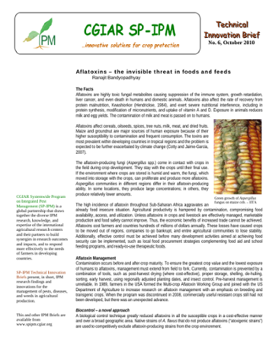 Aflatoxins – The Invisible Threat in Food and Feeds