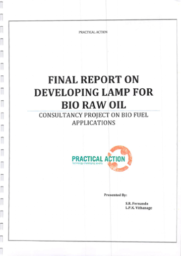 Final report on developing lamp for bio raw oil : consultancy project on bio fuel applications