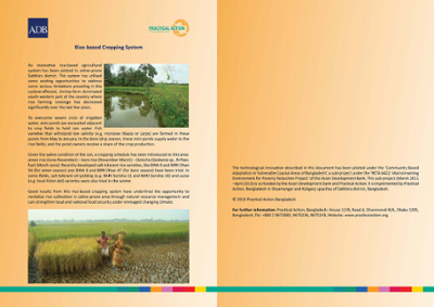 Rice-based Cropping System