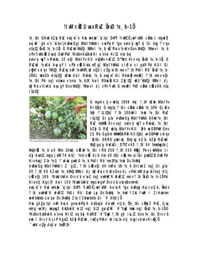 রোগ প্রতিরোধী জাত 'বাউ বেগুন-১'