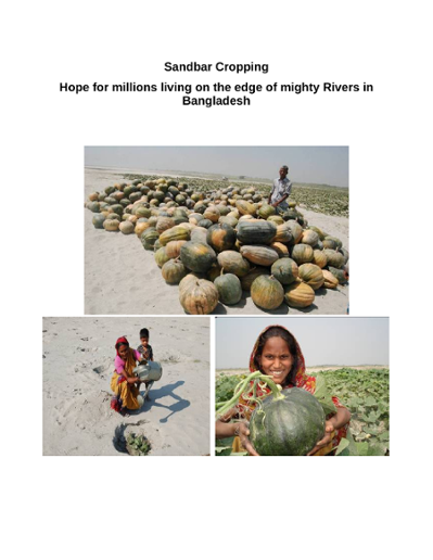 Sandbar cropping; hope for millions living on the edge of mighty rivers in Bangladesh